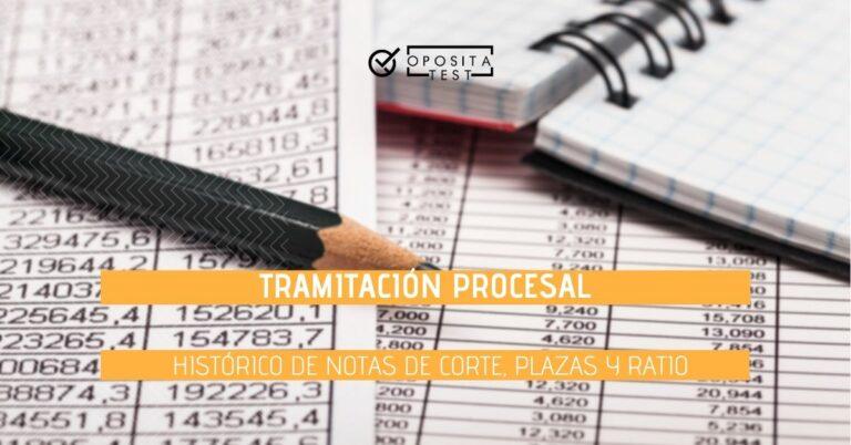 """Imagen de lápiz negro sobre hojas de estadísticas con filas y columnas de números que acompañan al printer """"Tramitación Procesal. Notas de corte, ratio y evolución de plazas"""""""